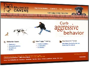 Dog behavior training in NJ, PA, NY